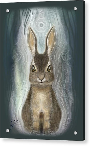 Rabbit Guide - Acrylic Print