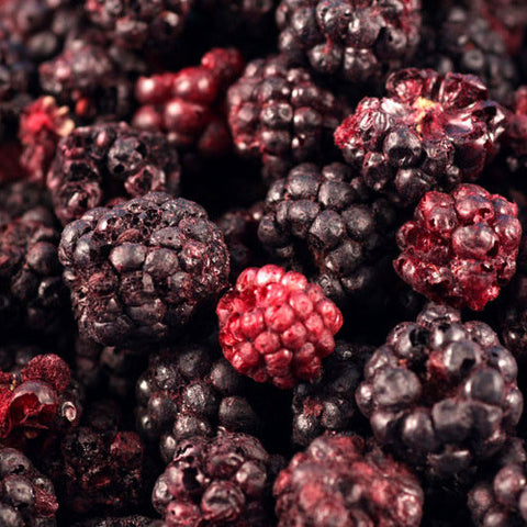 Freeze-dried Blackberries (25 servings)