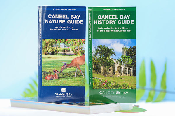 Caneel Bay Nature & History Guide