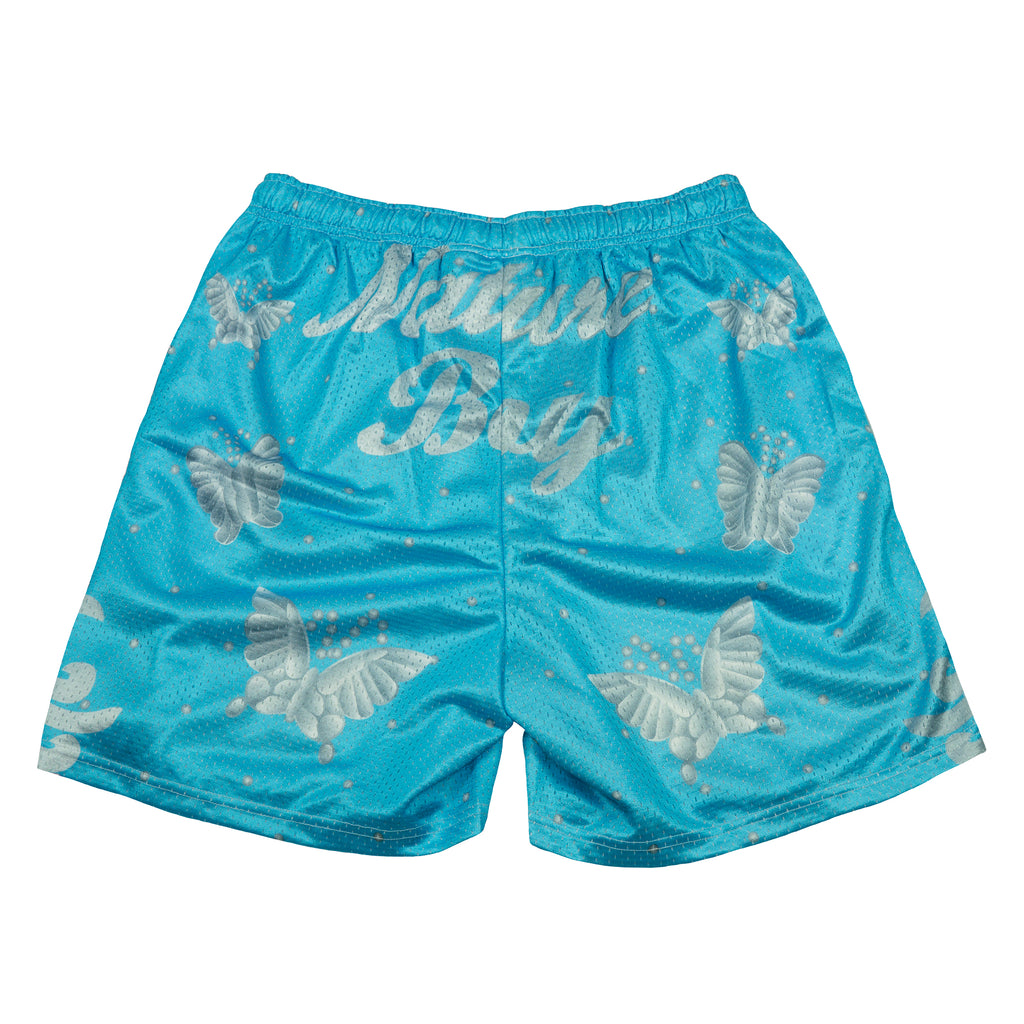 Ric Flair Aqua Nature Boy Shorts