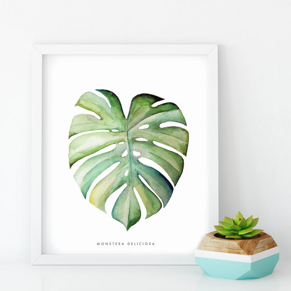 Monstera Leaf Illustrated Botanical Art Print