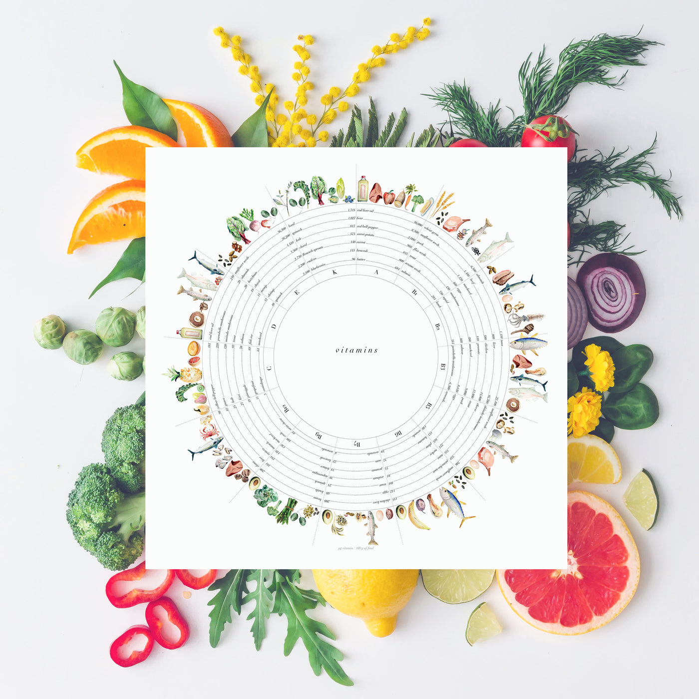Vitamin Wheel Art Print - Vegetarian