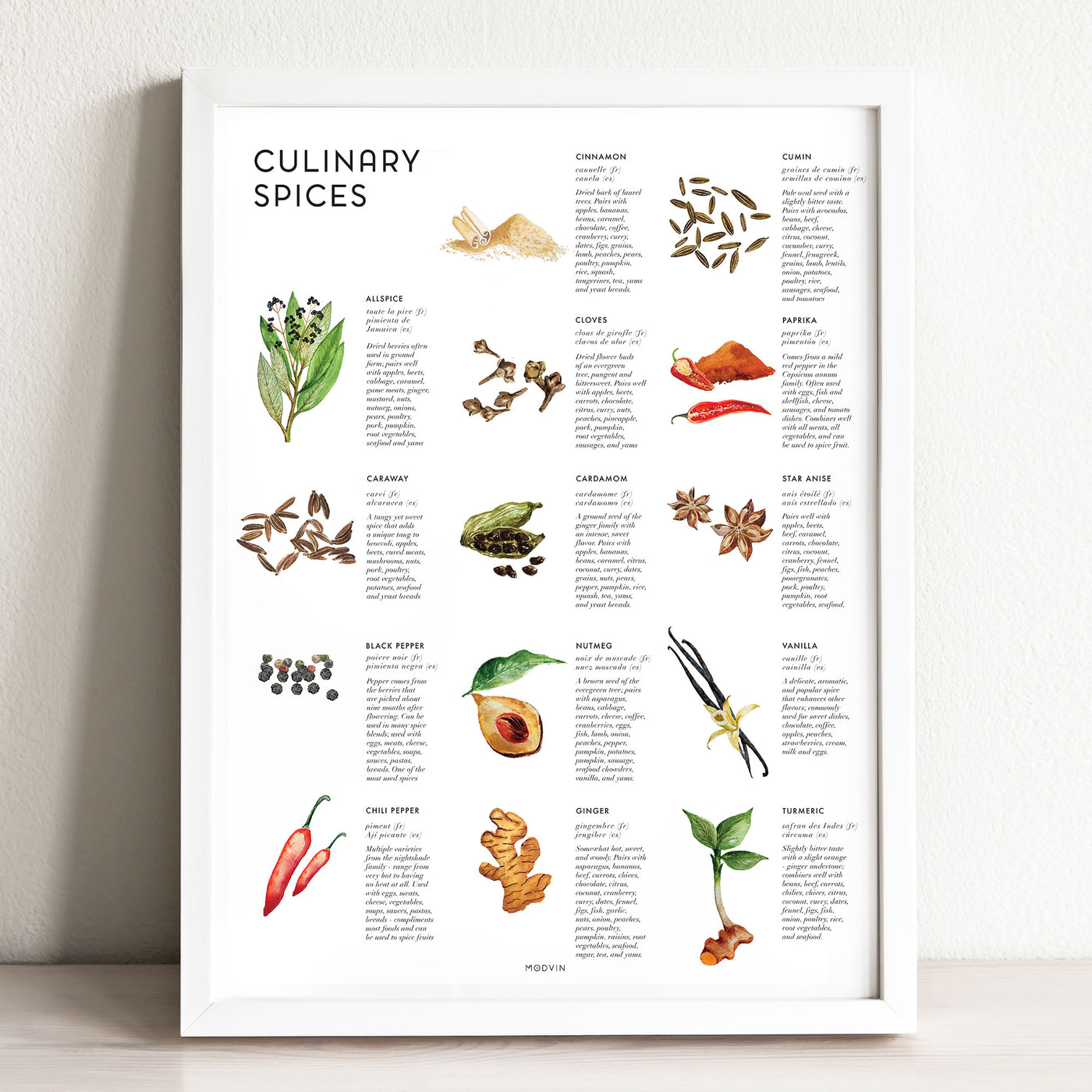 Culinary Spices Art Print