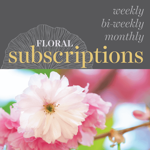 Floral Subscriptions