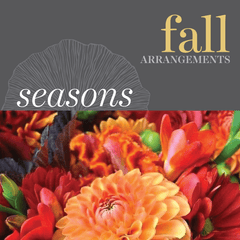 Seasonal - Fall