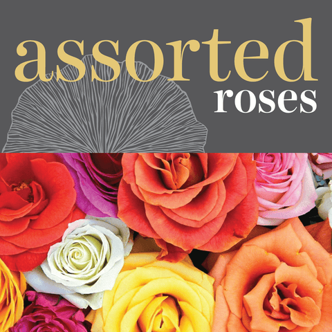 Roses - Assorted Colours