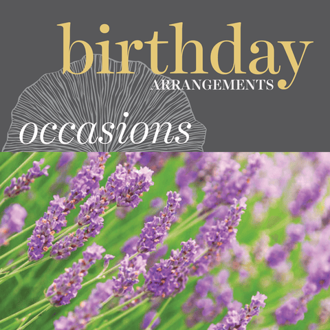 Occasions - Birthday