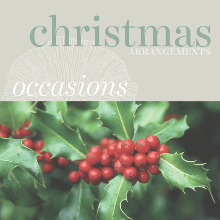 Occasions - Christmas