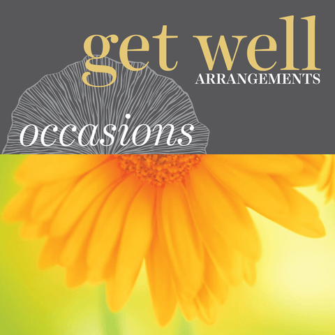 Occasions - Get Well