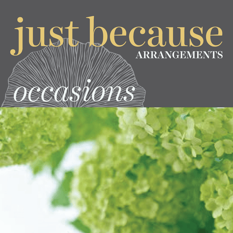 Occasions - Just Because