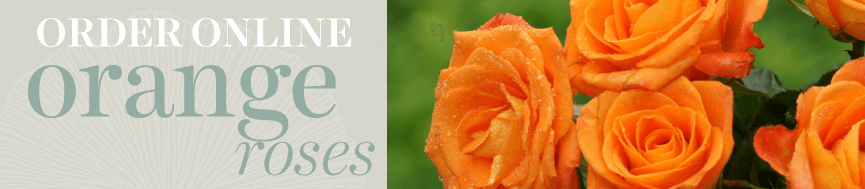 Sweetpea's Toronto Florist - Orange Rose Bouquets for Delivery