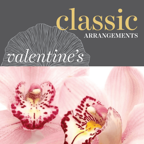 Sweetpea's Toronto Florist - Classic Valentine's Day Flower Arrangements for Toronto Delivery