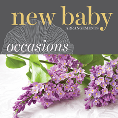 Sweetpea's Toronto Florist - New Baby Flower Arrangements
