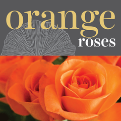 Sweetpea's Toronto Florist - Fresh Orange Roses for Valentine's Day Toronto Delivery