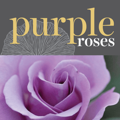 Sweetpea's Toronto Florist - Fresh Purple Roses for Valentine's Day Toronto Delivery