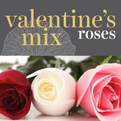 Sweetpea's Toronto Florist - Fresh Valentine's Mix Roses for Toronto Delivery