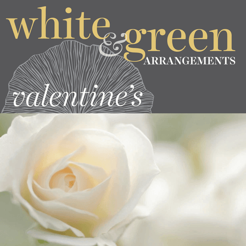 Sweetpea's Toronto Florist - White & Green, Minimalist Valentine's Day Flowers for Toronto Delivery