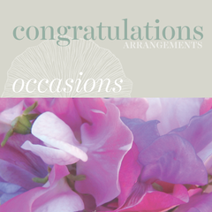 Sweetpea's - Fresh Flowers for Congratulations