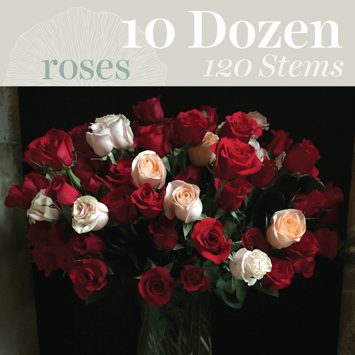 Toronto Flower Delivery - 10 Dozen (120 stems) Assorted Roses ...