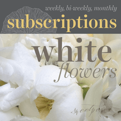 Floral Subscriptions - White Flowers