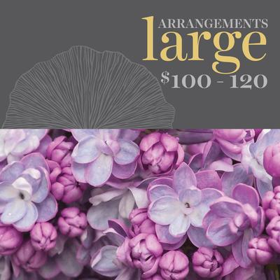 Shop Large Arrangements
