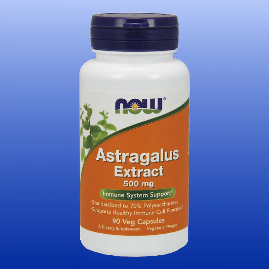 Astragalus Extract 500 mg 90 Capsules