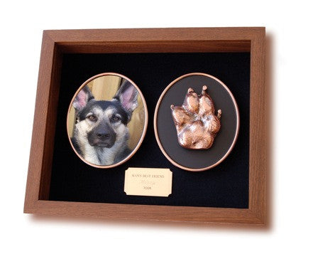 Bronze Paw Print Shadow Box