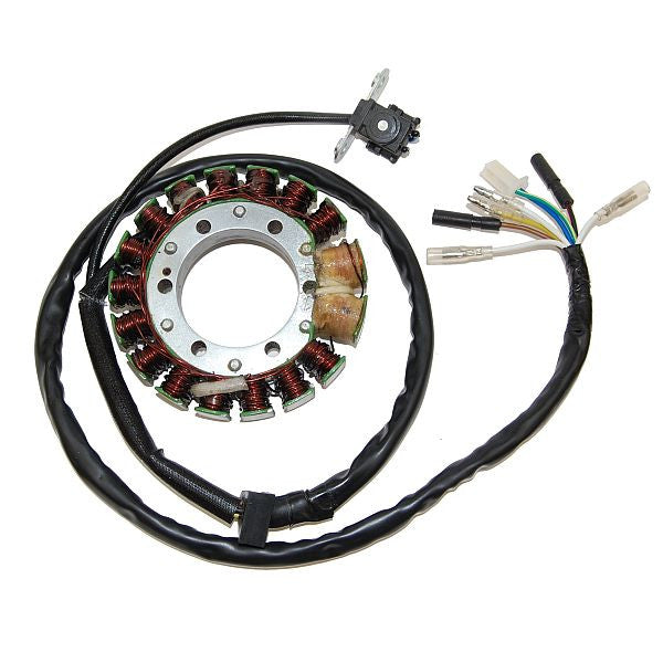 ESG443 Stator Honda XR650R/400R - High Power (2x100W)
