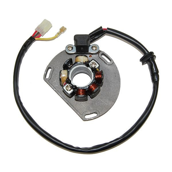 ESL239 Lighting Stator - KTM (06-ON)