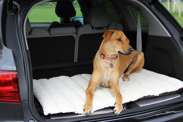 Roll-up Dog Travel Bed