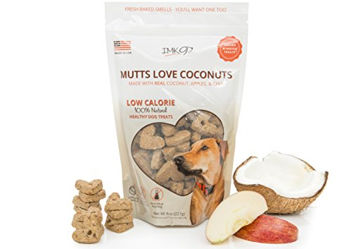 Organic Coconut Dog Training Treats Biscuits - Low Calorie Healthy Diet Treat for Puppy or Large Pets - Vegetarian, Baked & Crunchy - All Natural Fiber, No Grain, Gluten – Apple Fruit, Made in USA