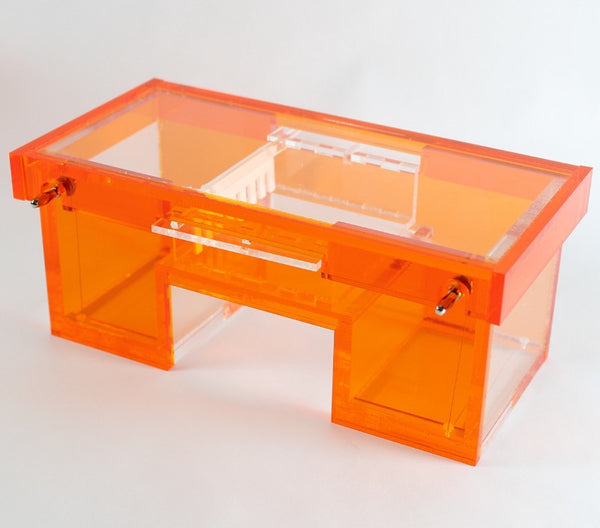 Mini gel electrophoresis box
