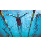 StrechCordz Stationary Swim Trainer - Alpha Aquatics & Performance
