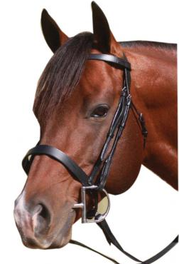 McAlister | Flat CNB Show Bridle