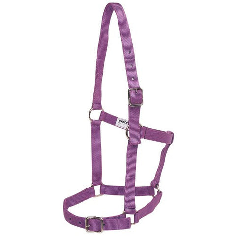Rancher | Stable Halter