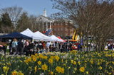 Vendor/ Artisan 2019 Booth Availability For Gloucester Daffodil Fest & Beer Garden Events APRIL 6 & 7