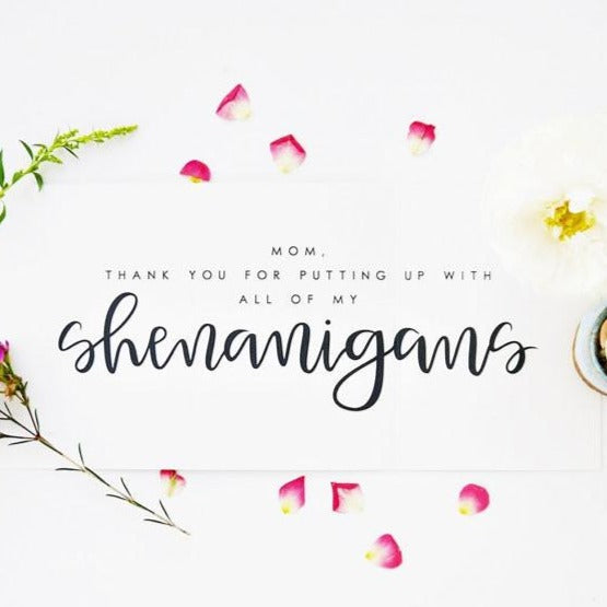 Shenanigans mothers day greeting card blume market shenanigans mothers day greeting card m4hsunfo