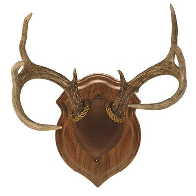 Walnut Deluxe Antler Display Kit