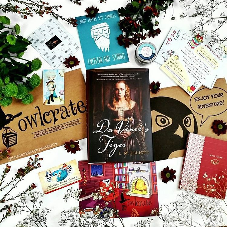 OwlCrate December 2015 'GET INSPIRED' Box