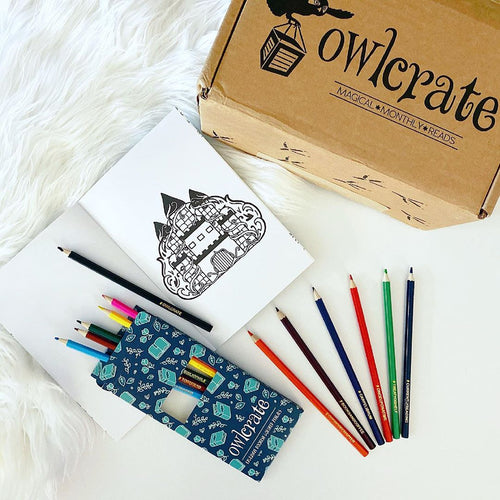 OwlCrate Bookish Pencil Crayons
