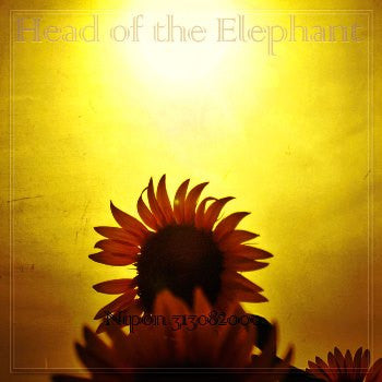 Nihon 313082000 by Head of the Elephant [Mp3 Album]