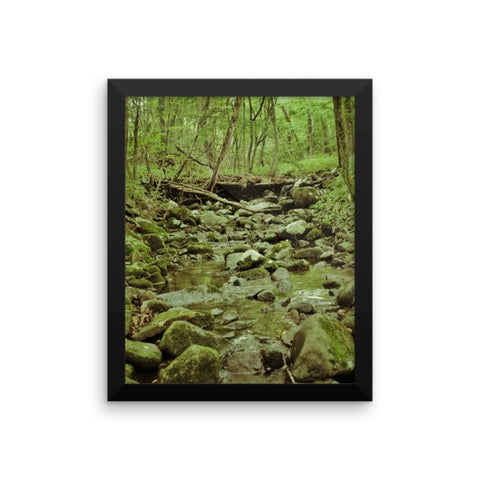 'Find My Way Home' Framed Poster by Momotaro Photography
