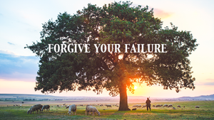 Forgive Your Failure - Lessons from the Sheep Pen