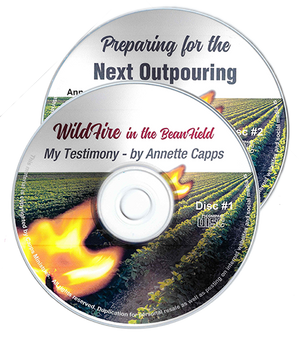 Supernatural Encounters with the Holy Spirit - Wildfire and the Next Outpouring