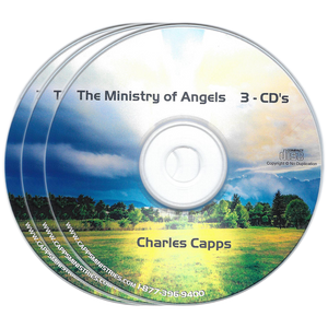 The Ministry of Angels