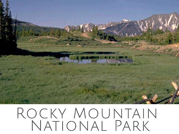 Rocky Mountain National Park Ornaments