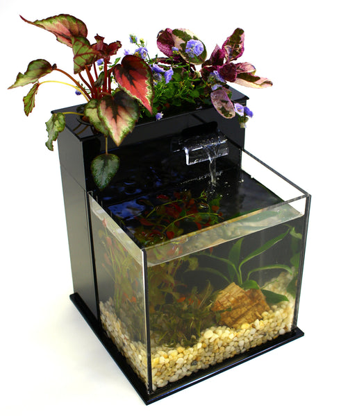Mini Aquarium System A