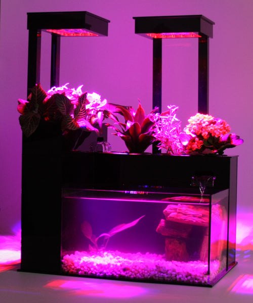LED Grow Light Kit<br>Midsize System B & Large System C