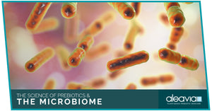 The Science Of Prebiotics & The Microbiome
