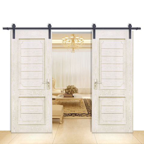 Barn Door Hardware Double